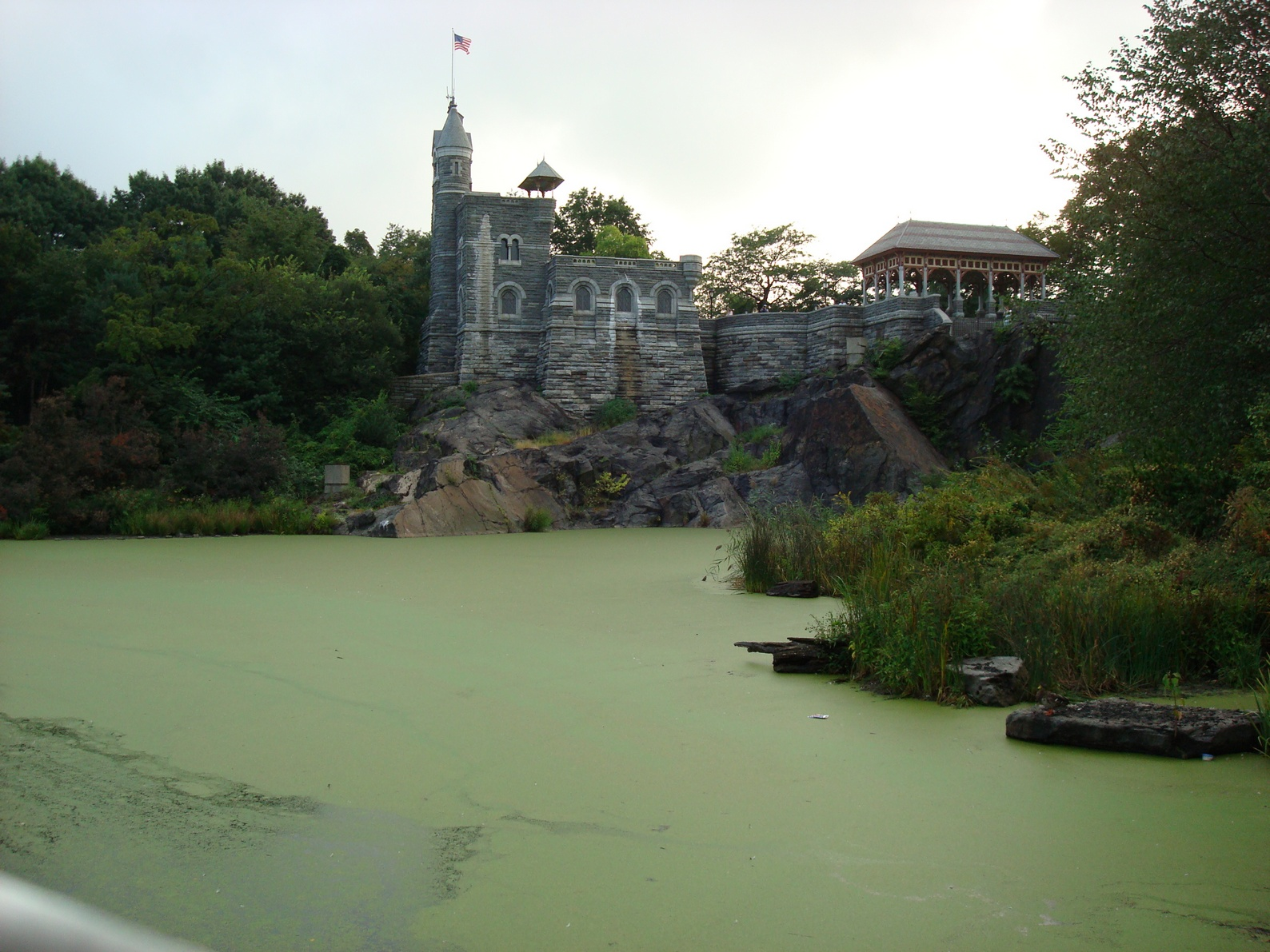 New York City, Central Park, Mossy Duck Pond