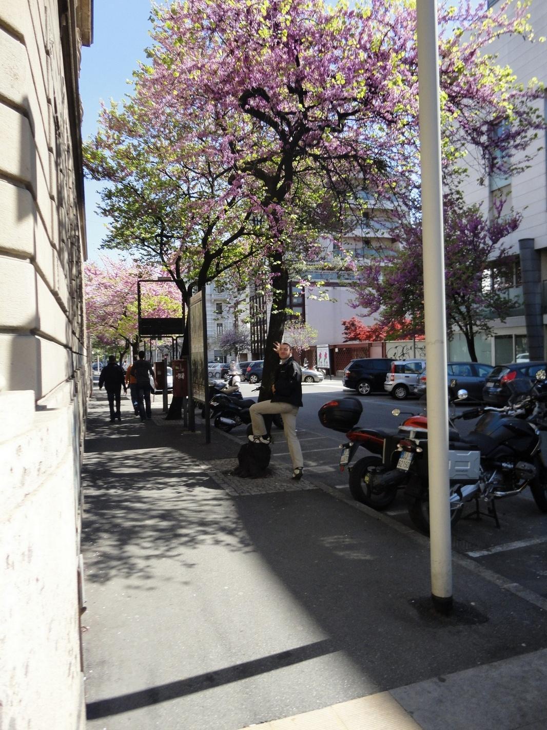 Bergamo Italy Beautiful Ambiance