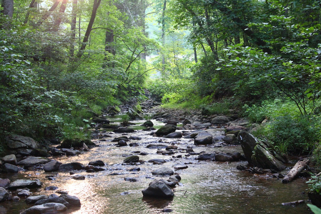 8000 miles trip - Shenandoah National Park, Virginia, USA