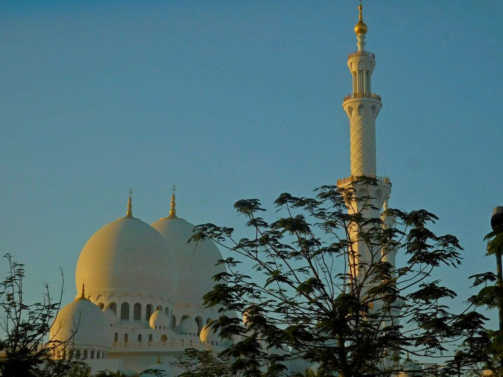 Sheikh Zayed Grand Mosque, Abu Dhabi, UAE, Outside, Dusk, Tree in Front