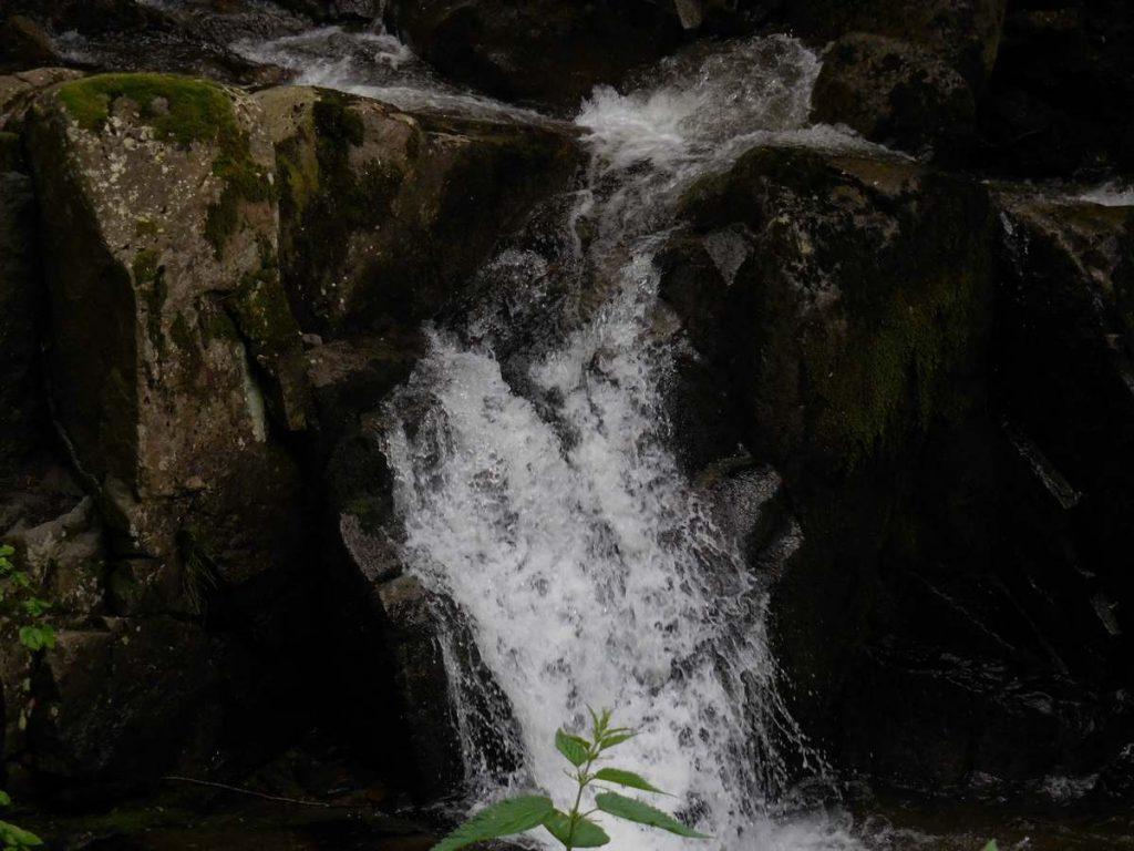 Zlatnite Mostove, Vitosha Mountains, Creek Image 1, Bulgaria