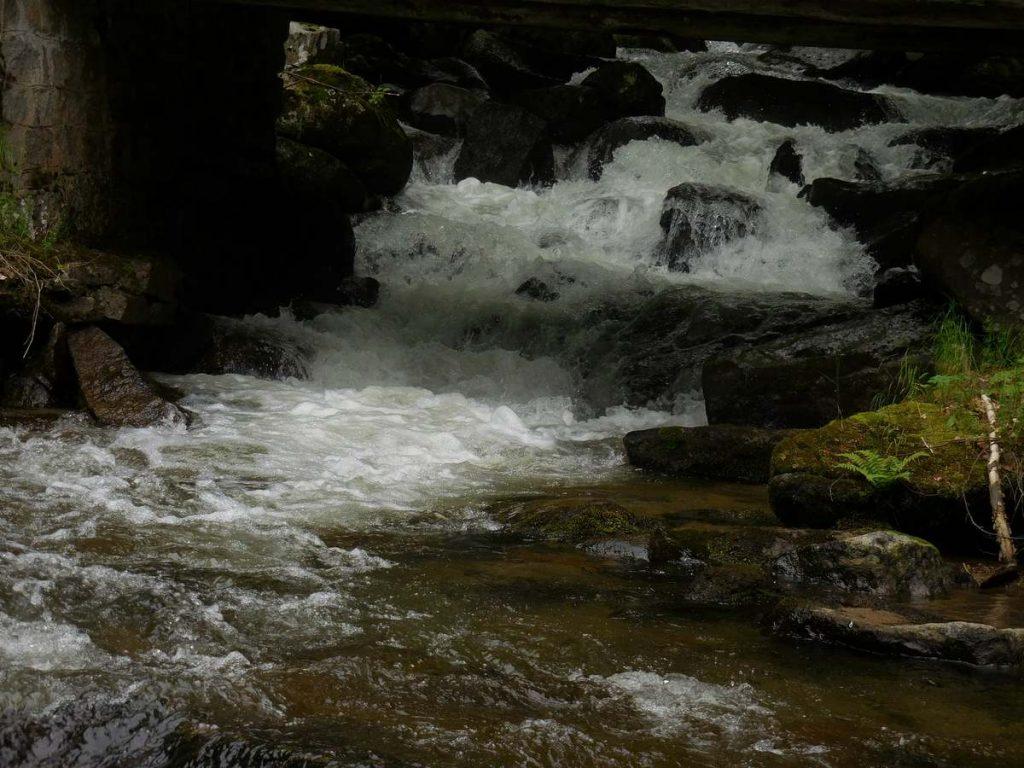 Zlatnite Mostove, Vitosha Mountains, Creek Image 3, Bulgaria