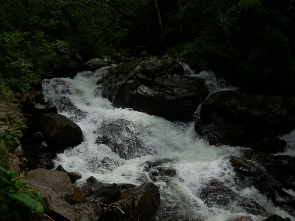 Zlatnite Mostove, Vitosha Mountains, Creek Image 6, Bulgaria