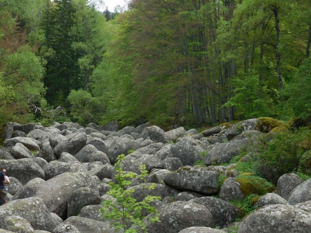 Zlatnite Mostove, Vitosha Mountains, The Stone River Image 1, Bulgaria