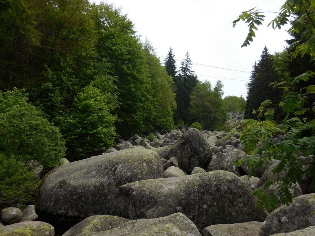 Zlatnite Mostove, Vitosha Mountains, The Stone River Image 2, Bulgaria