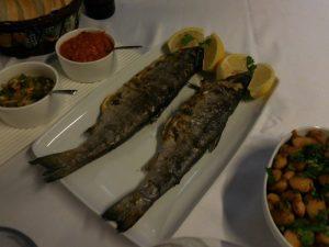 Villa Vuchev, Velingrad, Spa Capital of the Balkans, Lunch and Dinner Menu 2, Bulgaria