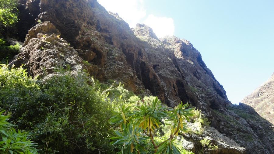 Tenerife, the Island of Eternal Spring, Hike to Masca Bay, Buenavista