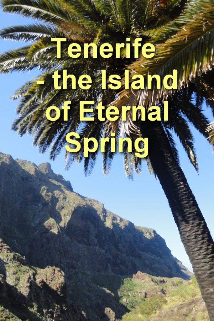 Tenerife - the Island of Eternal Spring, Masca, Pinterest Image, Gorgeous Palm