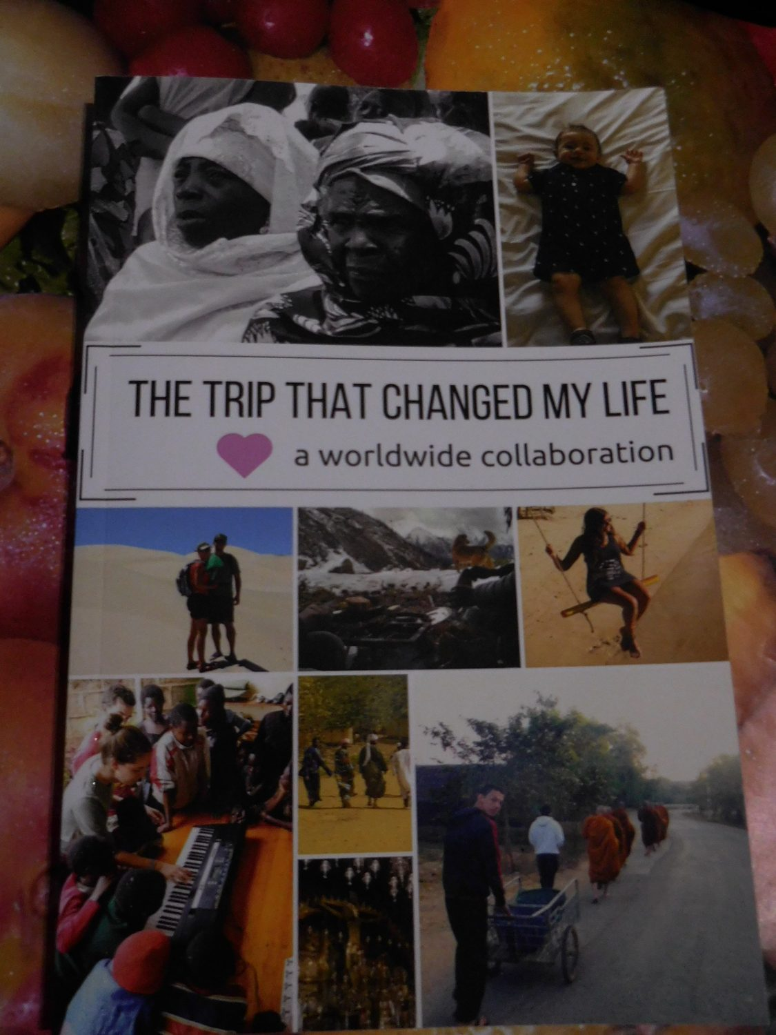 Project Alpha - parerback book - The Trip that Changed my life