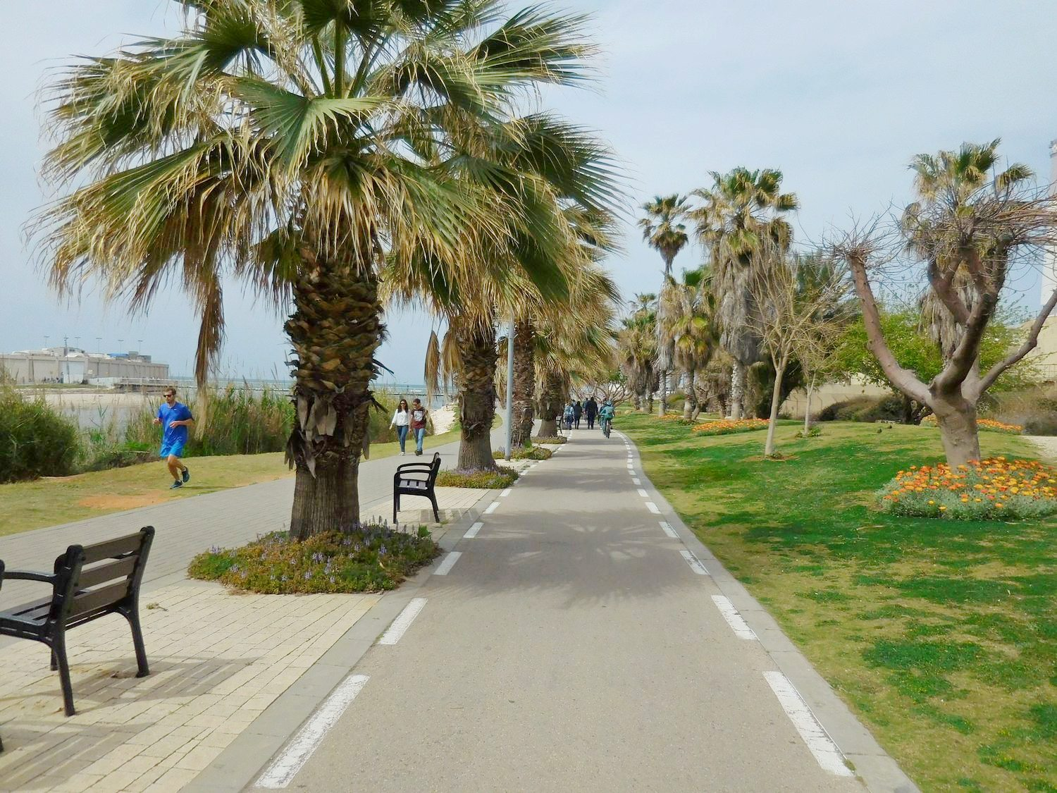 tel aviv promenade, march, sunshine