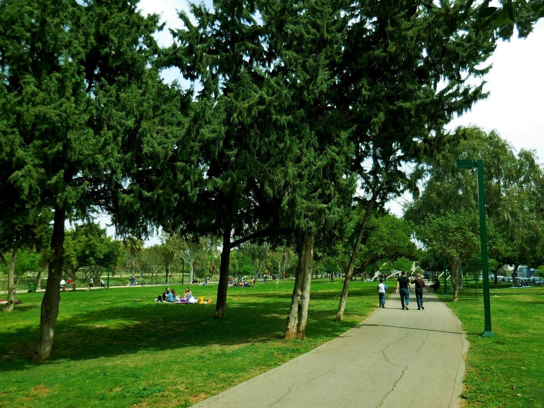 tel aviv, verdant yankon park, alleys