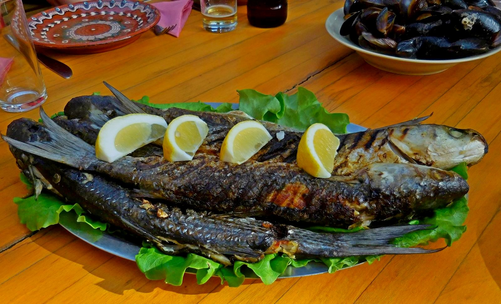kavarna region, delectable fish, bulgaria, nash dom
