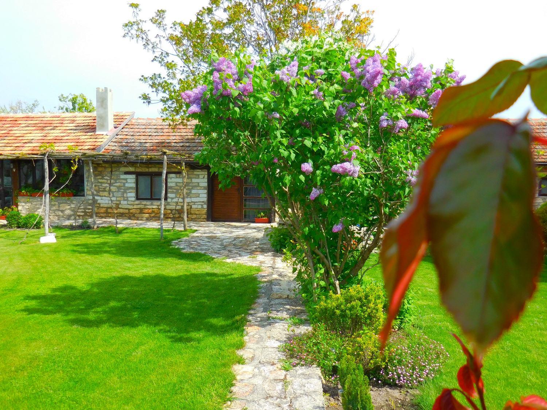 kavarna region, ryegrass, levana house, bulgaria