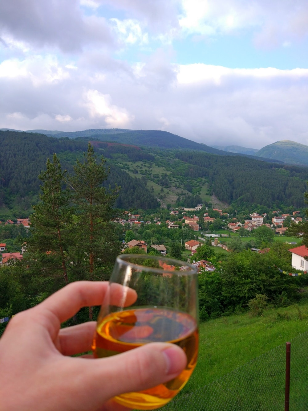 Home-made Rakia, Svoge, Mountains, Bulgaria